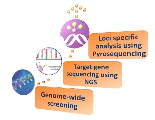 NGS Next-Gen Sequencing