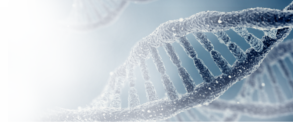 targeted gene next-gen sequencing